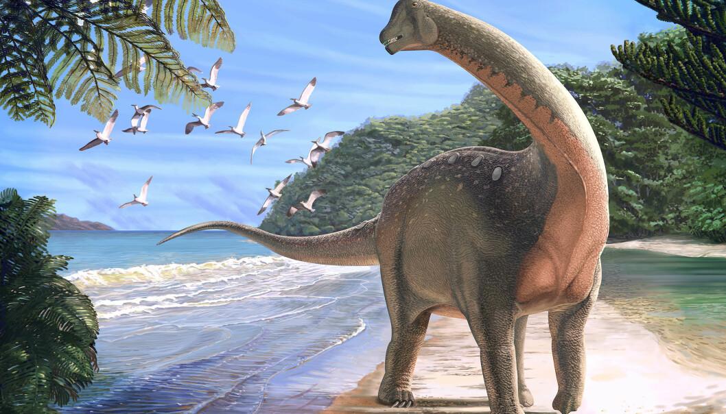 Slik tror forskerne Mansourasaurus shahinae vandret på en kystlinje i det som nå er Sahara for rundt 80 millioner år siden. (Illustrasjon: Andrew McAfee, Carnegie Museum of Natural History)