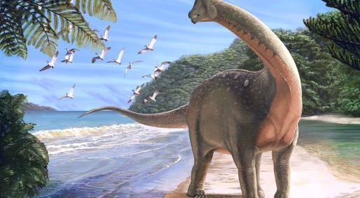 Tetter hull i den afrikanske dinosaurfamilien