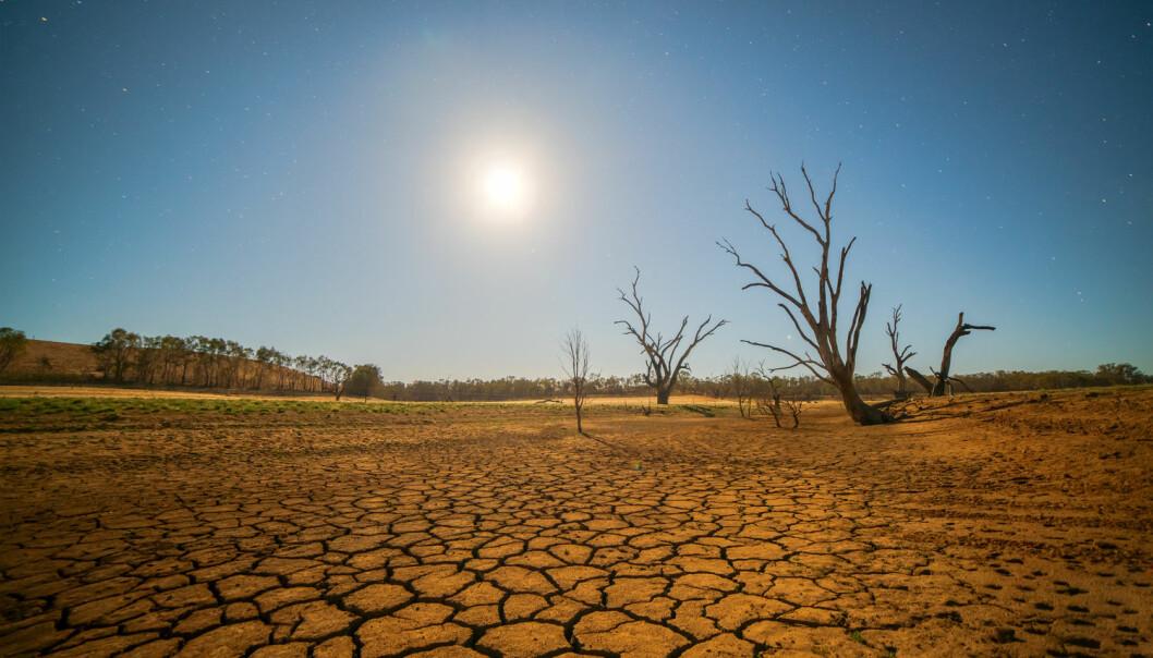 Klima-tukling kan ødelegge klodens biologiske mangfold