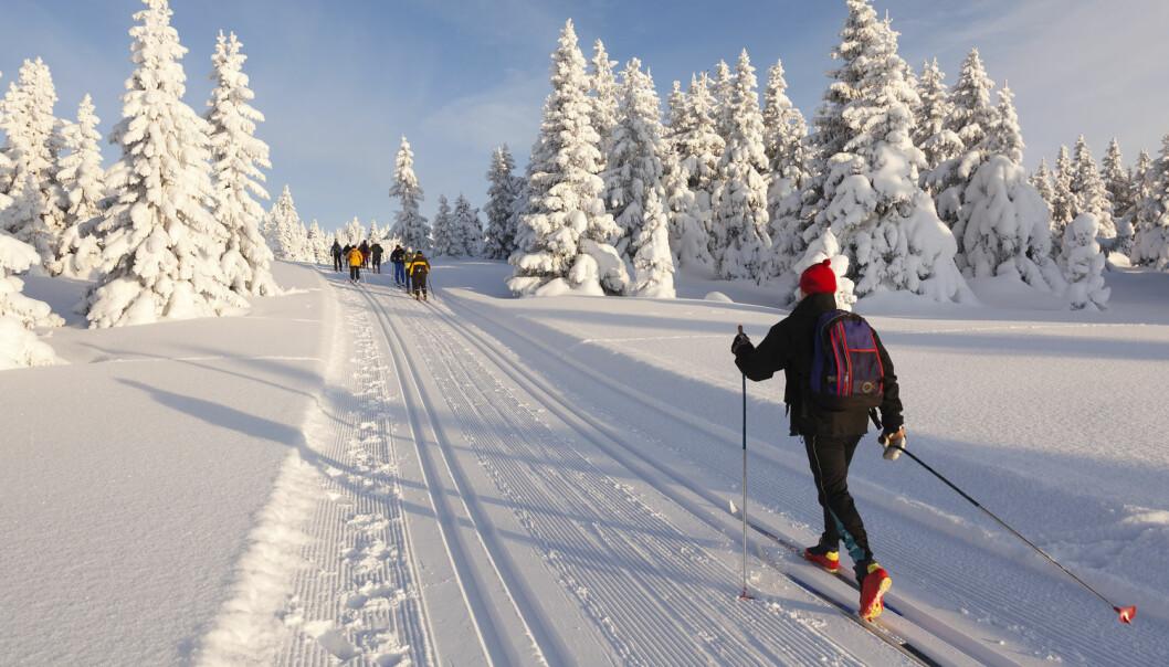 Du bør trene rundt tre ganger i uka for å bli skikkelig god på ski, mener ekspert.  (Illustrasjonsfoto: Shutterstock / NTB Scanpix)