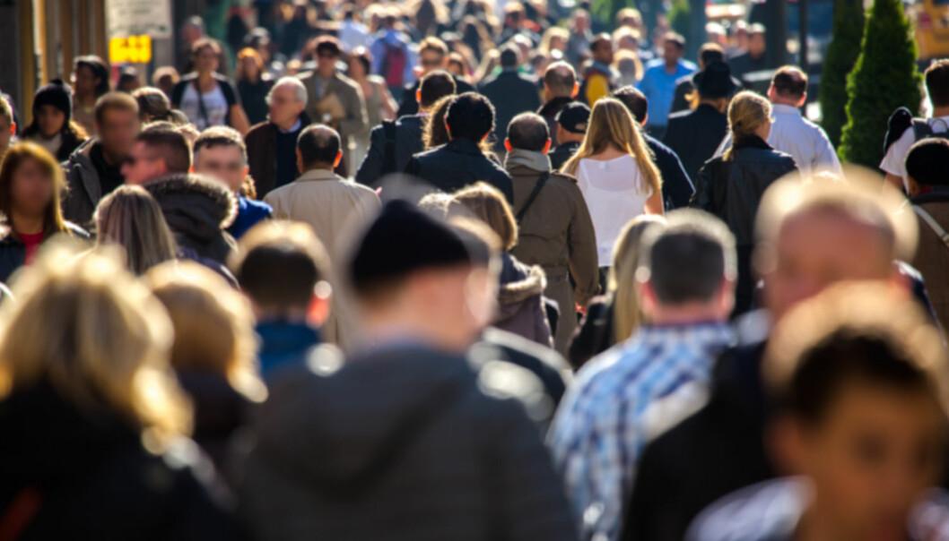 Mennesker kan samarbeide og leve med digre sosiale grupper, for eksempel i en by. (Foto: blvdone / Shutterstock / NTB scanpix)