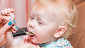 Både maten foreldrene serverer barna, og hva de voksne selv spiser, spiller inn på barnas vekt.  (Foto: Colourbox)
