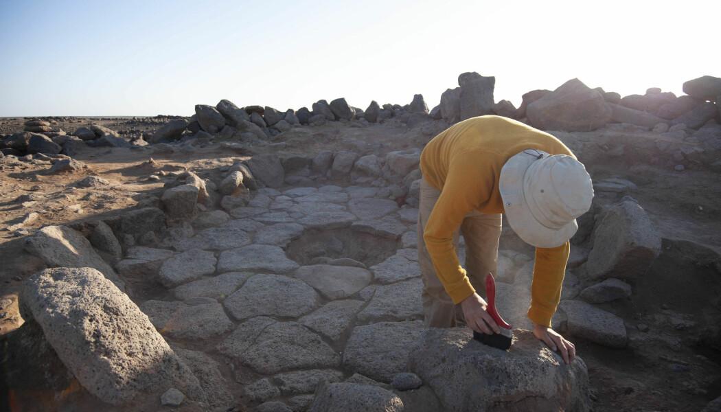 Ved dette gamle ildstedet i Jordan leter arkeologene etter mat. 14 000 år gammel mat. (Foto: Alexis Pantos)