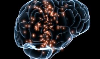 Språk, hjernetrim og grensesprengende erkjennelser