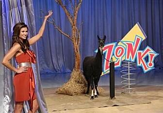 Programverten Alison Fiori med en av tullepremiene i <i>Let's Make a Deal</i>: En lama. (Foto: Wikipedia Commons)