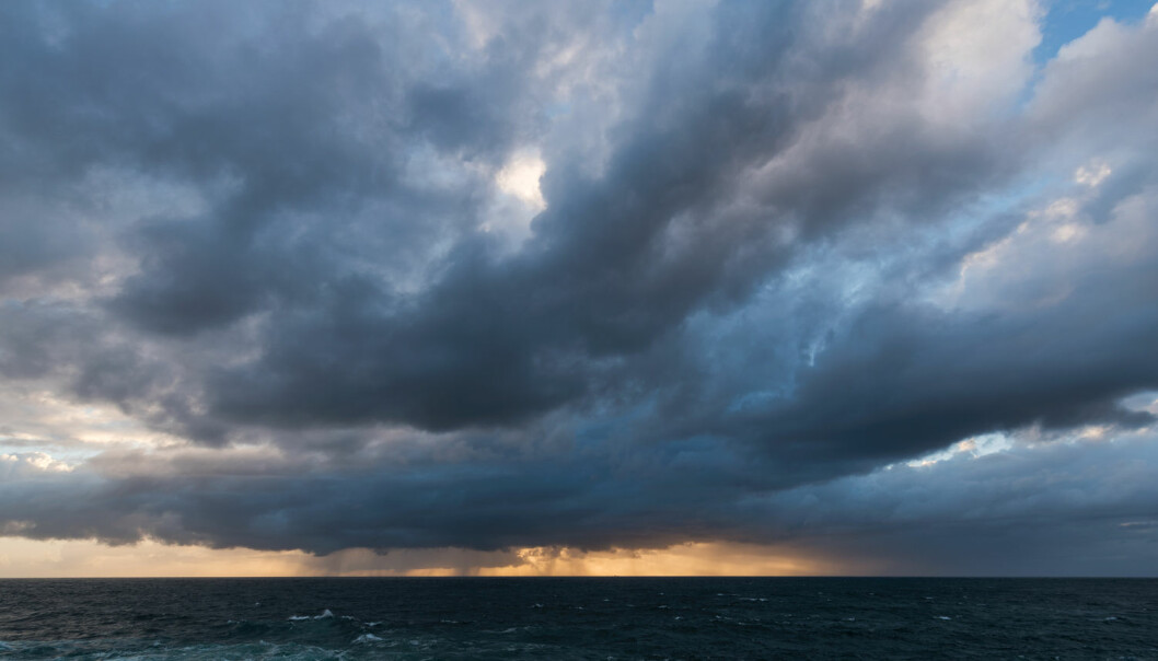 Dyphavsfisk reagerer på regnvær