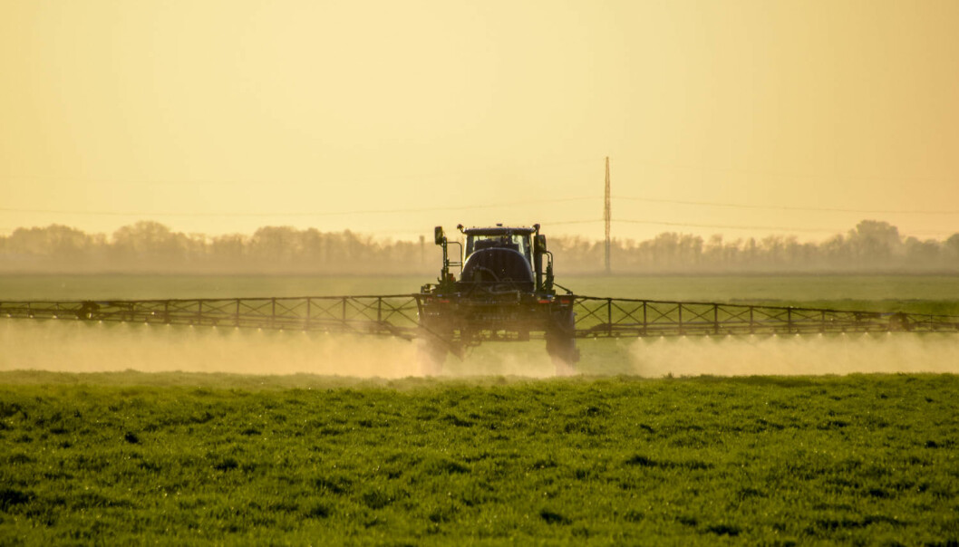 Plantevernmidlet glyfosat er svært mye brukt i landbruket. Kan det utgjøre en helsefare for folk som jobber med jorda?  (Illurtrasjonsfoto: Leonid Eremeychuk / Shutterstock / NTB scanpix)