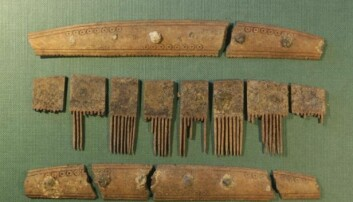 Her ser vi kammen som arkeologene har funnet i Ribe i Danmark. (Foto: Søren Sindbæk)