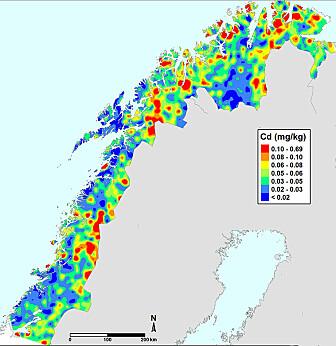 Kartet fra Nord-Norge viser hvordan kadmium (Cd) fordeler seg i jorda. Slike kart kan forskerne framstille for alle grunnstoffene som blir analysert. (Illustrasjon: NGU)