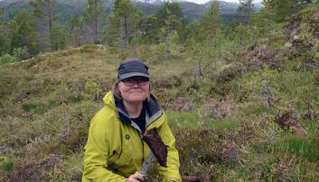 Her skjærer Malin Andersson av en del av humuslaget i toppen av en jordprofil. (Foto: Gudmund Løvø, NGU)