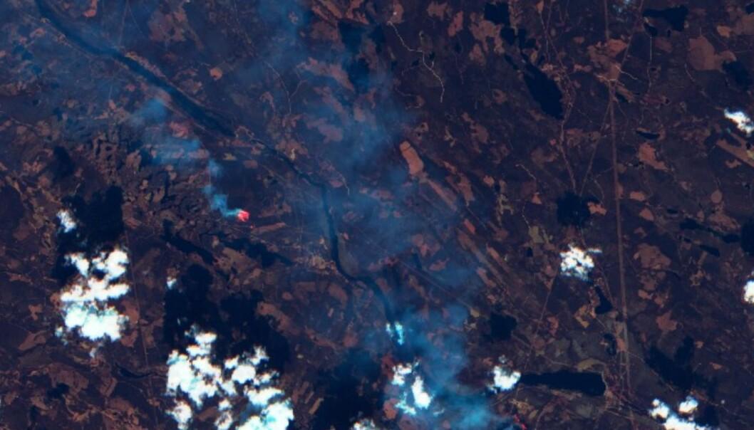 Skogbranner nordvest for Ljusdal i Sverige, sett fra Sentinel-2 mandag 16. juli. (Bilde: Copernicus Sentinel data 2018)