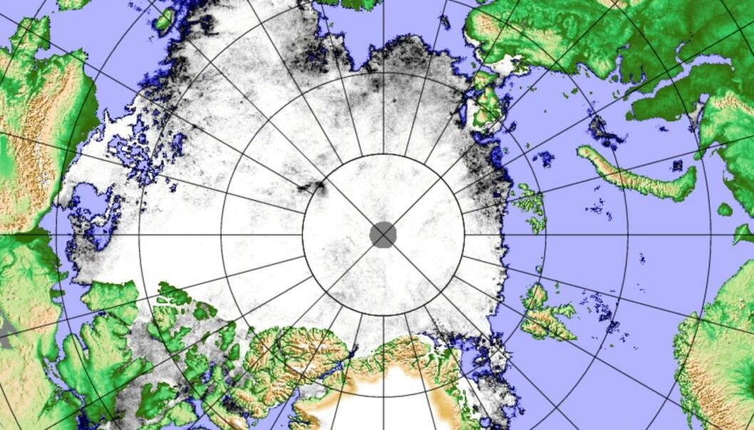 Iskart basert på det japanske satellittinstrumentet AMSR2. (Bilde: PolarView/Universitetet i Bremen)