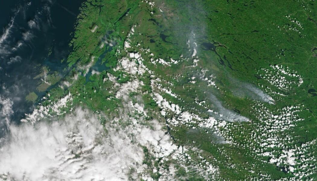 De svenske skogbrannene (til høyre i bildet) sett av satellitten Sentinel-3 17. juli i år. (Foto: Copernicus / ESA)