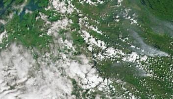Slik ser brannene ut fra verdensrommet