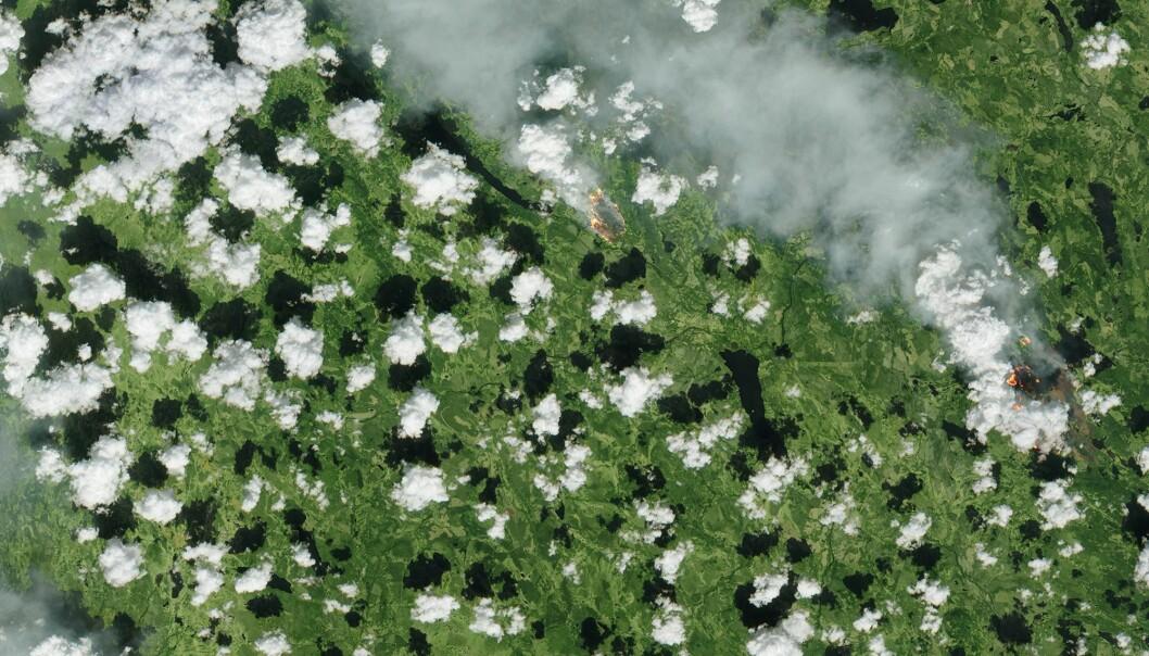 Skogbrannene i Sverige sett av satellitten Sentinel-2 den 17. juli 2018. Foto: Copernicus/ESA