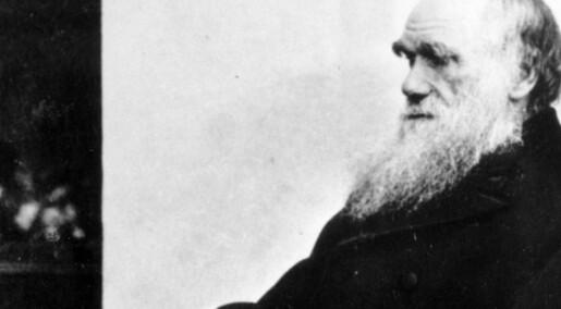 Myten om det ensomme geniet