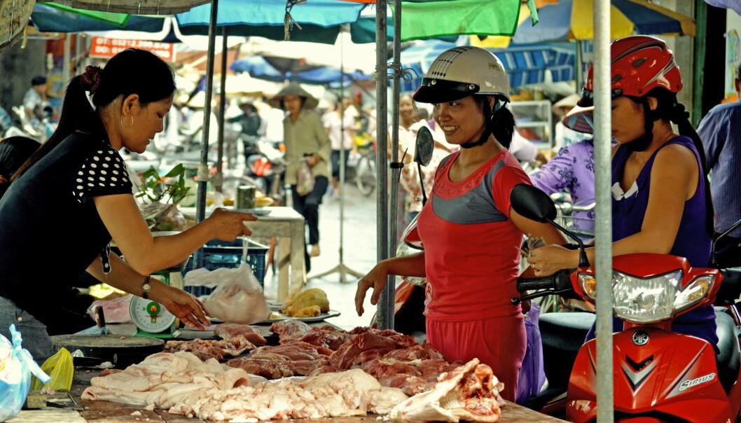 Den gjennomsnittlege vietnamesar et nå fire gonger meir enn ho gjorde for 30 år sidan. Her frå eit kjøtmarknad i Hung Yen-provinsen, Vietnam. (Illustrasjonsfoto: Nguyen Ngoc Huyen / ILRI / Flickr)