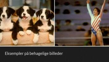 Her er to eksempler de positive bildene forsøkspersonene så mens de lå i hjerneskanneren. (Foto: K.W. Miskowiak et.al., 2018)