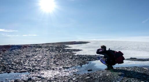 Isbreene smelter i sommervarmen
