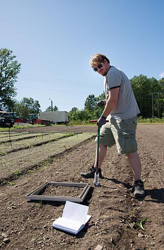 Forsker Simon Weldon tar jordprøver for å måle temperatur og fuktighet. – Det er to av de viktigste variablene som påvirker disse klimagassutslippene. Jo varmere og fuktigere det er, jo mer utslipp, sier Weldon. (Foto: Anette Tjomsland)