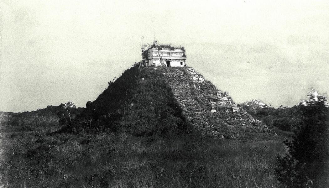 Den digre Castillo-pyramiden, slik den framsto i 1892, nesten helt gjengrodd. (Bilde: Teobert Maler)