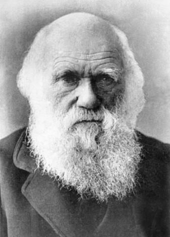 Charles Darwin. (Foto: Shutterstock / NTB Scanpix)