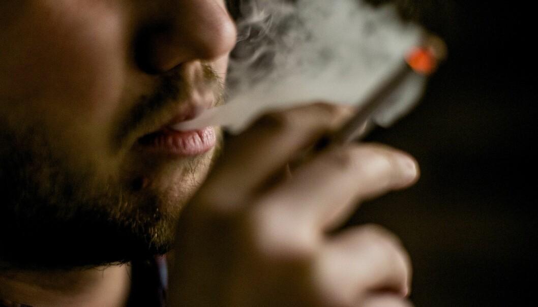Forskerne har samlet inn opplysninger om røykevanene til 4020 kvinner og 3033 menn i alderen 30 til 89 år. (Foto: Stian Lysberg Solum, NTB scanpix)