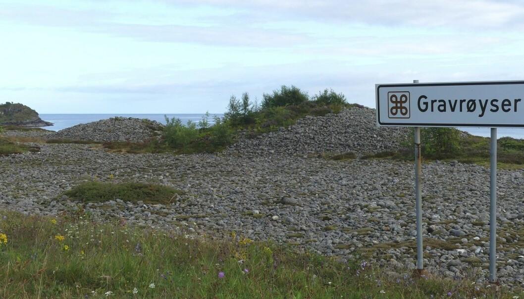 Gravhauger er bevart flere steder langs turistveien – fra Male i Hustadvika. (Foto: Ane K. Engvik)