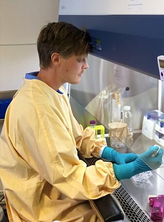 Forskerne laget en modell i en petriskål med celler som skulle simulere veggen mellom lungene og blodbanen. Her er Bendik Brinchmann på labben. [Foto: Privat]