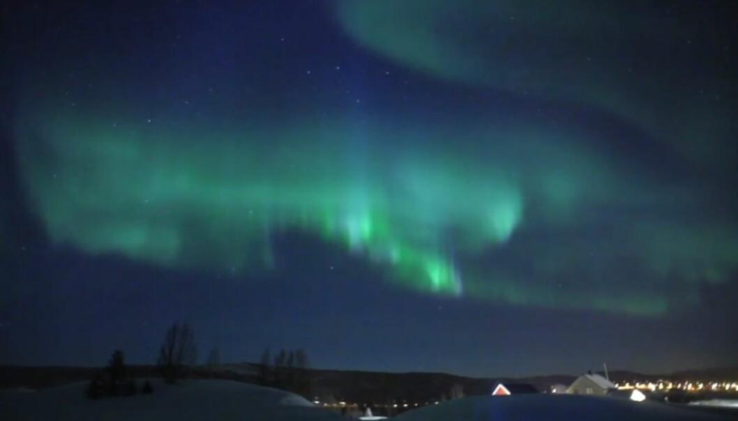 Det er ikke mange forunt å se det vakre nordlyset med egne øyne daglig. For å gjøre det, må du nesten være bosatt nord for polarsirkelen, eller følge med på direktekameraene til Zooom.no. (Illustrasjon: Zooom.no)