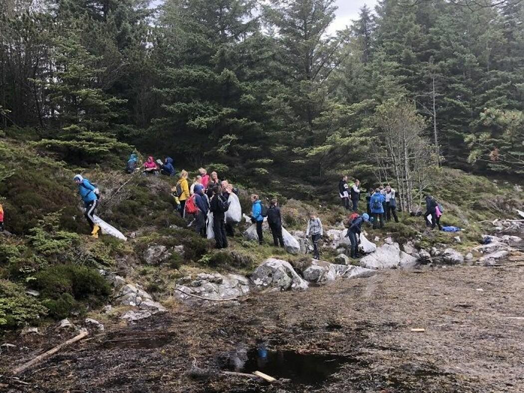 En gruppe frivillige hjelper til med å rydde og registrere avfall. (Foto: Marte Haave, Uni Research/NORCE)