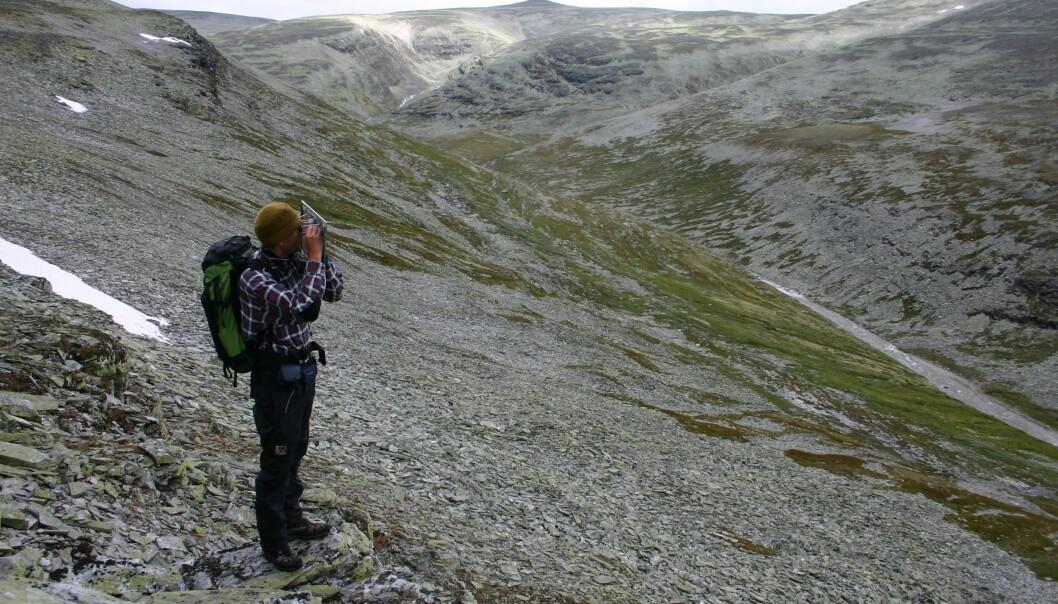 Anders Bryn kartlegg i Rondane. (Foto: Yngve Rekdal)
