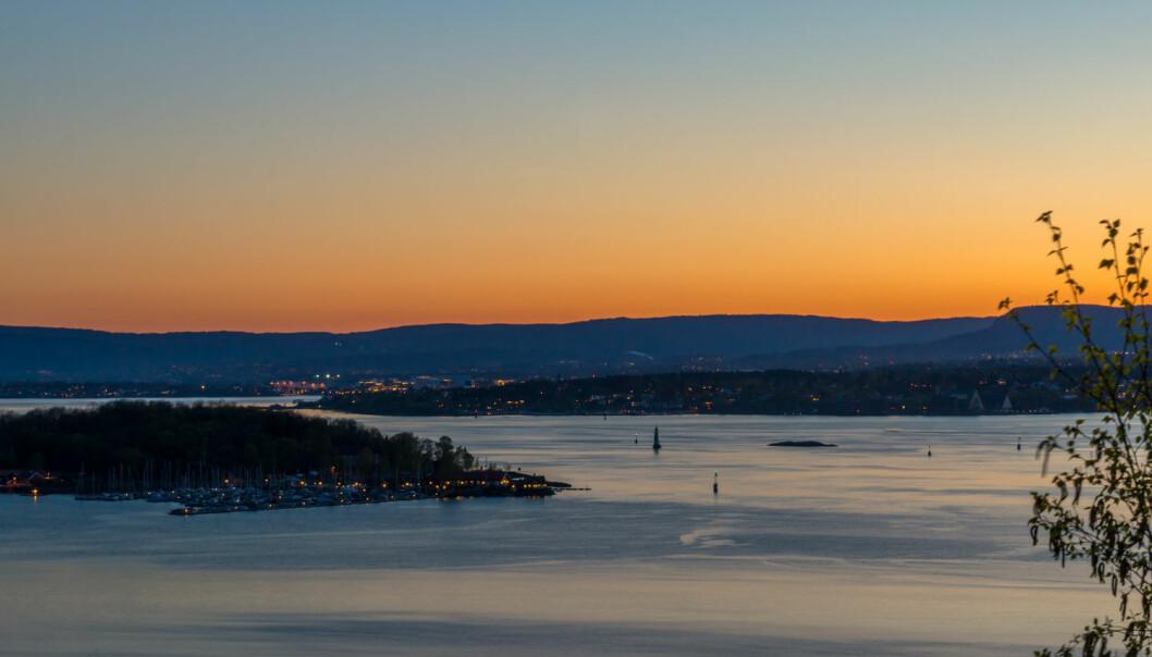 Livet i Oslofjorden blir påvirket av utslipp fra industri og jordbruk. Men hvordan er forholdene der nå? Er ting på bedringens vei? (Illustrasjonsfoto: Shutterstock / NTB Scanpix)