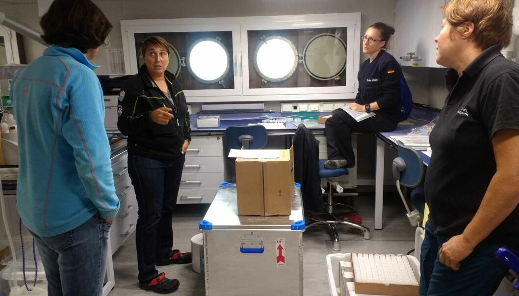 I kjemilaboratoriet følger toktleder Randi Ingvaldsen (t.v.) med når Melissa Chierici, Elisabeth Jones og Agneta Fransson installerer høyteknologiske instrumenter som måler karbonkjemien i havet. (Foto: Bodil Bluhm, UiT)