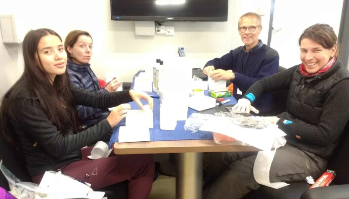 Siv Hoff, Sissel Jentoft, Leif Christian Stige og Ireen Vieweg lager merkelapper til prøveflasker for fiskeblod. (Foto: Bodil Bluhm, UiT)