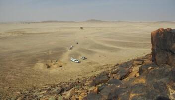 Bildet viser Saffaqah i Saudia Arabia. I dette området var det en gang elveleier. [Foto: ANU]