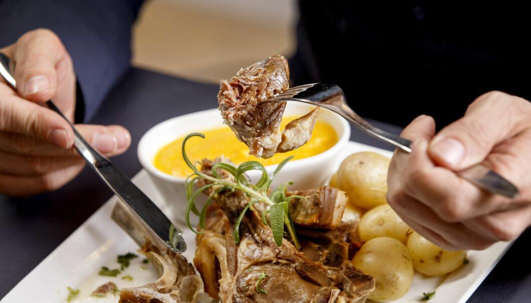 Stemmer det at akevitt hjelper på fordøyelsen? Ernæringsekspert forklarer hva som skjer i tarmen når vi spiser feit og god julemat.  (Foto: Gorm Kallestad / NTB scanpix)