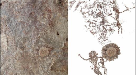 Oppdaget hittil ukjente hulemalerier på øy i Indonesia