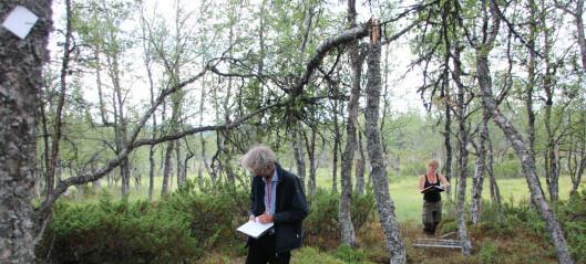 Feltrapport: NINA tar tempen på norsk natur
