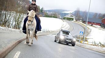 Skal forske på hest i trafikk