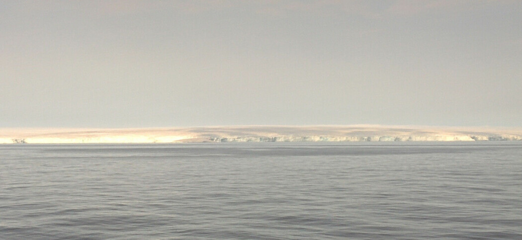 Kvitøya (Foto: Randi Ingvaldsen, HI)