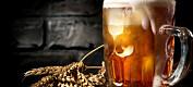 Bakgrunn: Nordmenn drakk juleøl og skåla for Odin