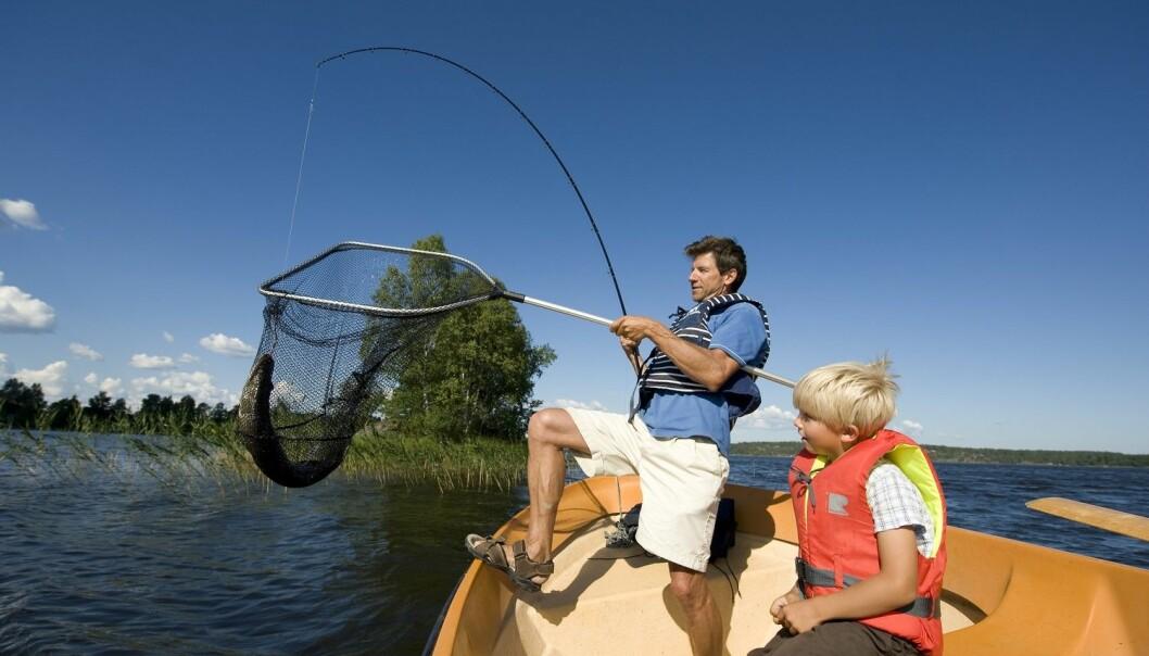 For barnefamilier, hvor kona og barna kanskje ikke er de mest ivrige gjeddefiskerne, bør næringen tilrettelegge for flere aktiviteter og opplevelser. (Foto: Terje Rakke / Nordic Life / Visitnorway.com)