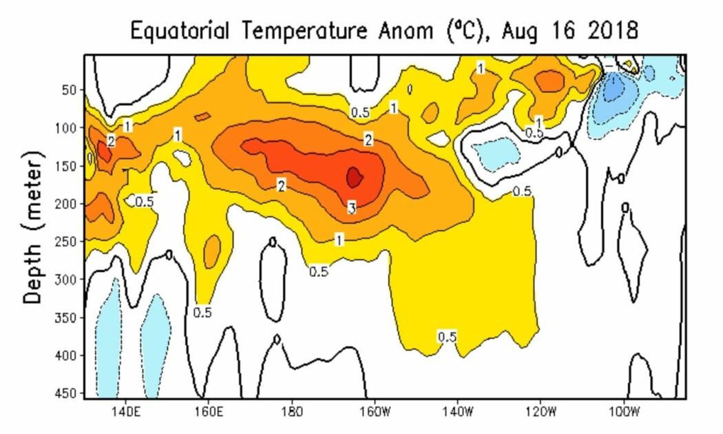 Figur 3:  Mye varmt vann 150 meter under overflaten midt i Stillehavet nå, og denne anomalien er på vei østover. (Bilde: NOAA)