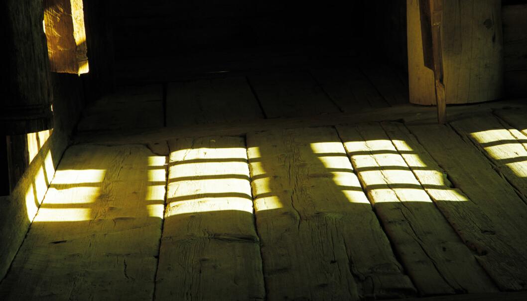 Folk har gjennom middelalderhistorien mistet over ti tusen mynter gjennom sprekkene i tregulvene i norske kirker. (Foto: Yngve Vogt)