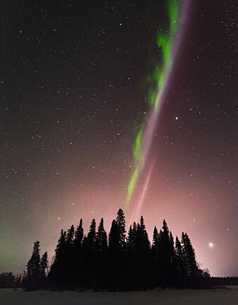 Med kamera kan man fange de lilla og grønne fargene. [Foto: Ryan Sault Photography / Shutterstock / NTB scanpix]