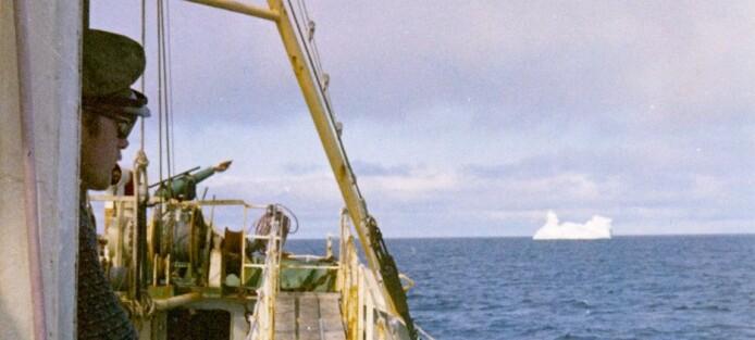 Forskere fant hval med plast i magen allerede i 1971