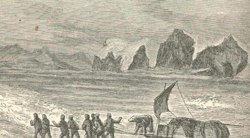 Blodtørstig julebjørn herjet i arktisk litteratur
