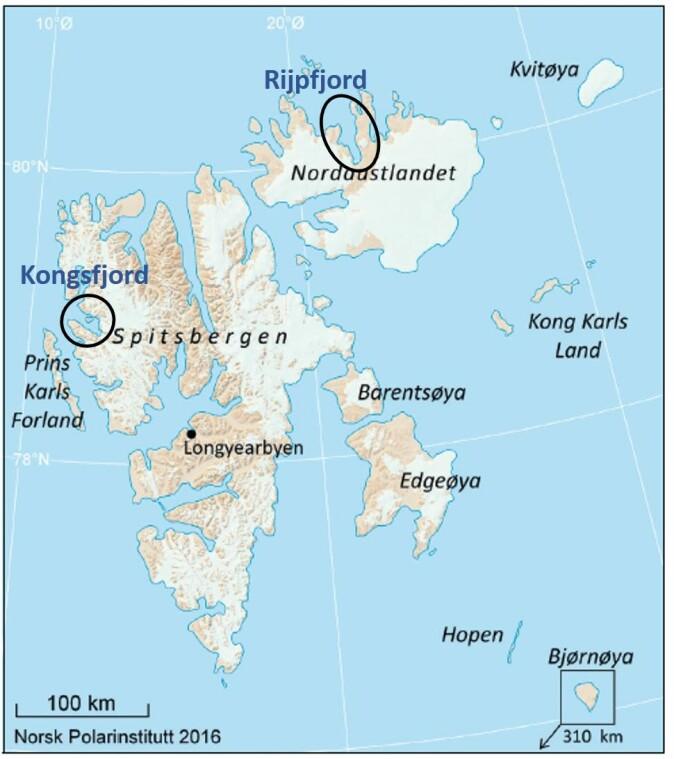 De to områdene som skal kartlegges av Mareano på dette toktet er markert med sorte sirkler. Kongsfjorden er det sørligste området og Rijpfjord er det nordligste. (Kilde: Norsk polarinstitutt)
