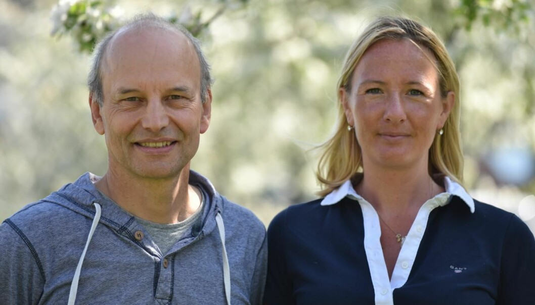 Universitetet i Uppsala slår fast at professor Peter Eklöv og Oona Lönnstedt har vært vitenskapelig uredelige i forbindelse med en studie om hvordan mikroplast påvirker abboryngel. (Foto: Kristin Scharnwebber / Uppsala universitet)